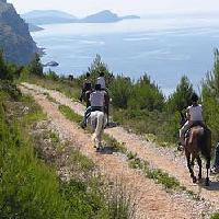 activities in Cavtat - sports and adventure
